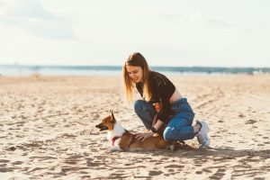 Why are Dogs Good for Health?